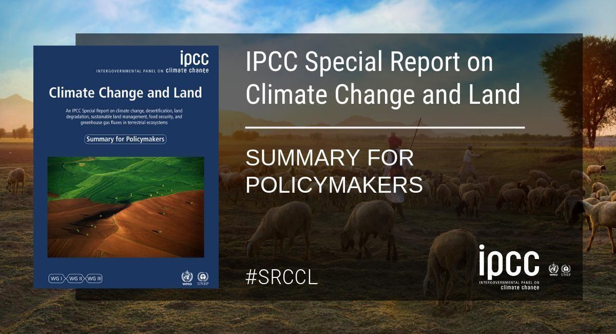 Växtbaserad mat för klimatet lyfts fram i ny IPCC-rapport